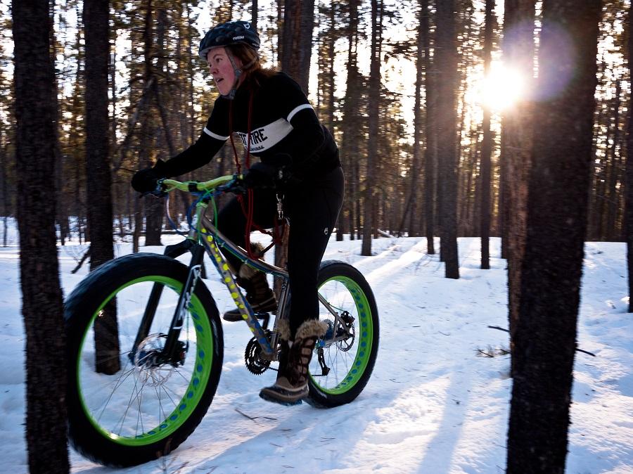bici elettrica ruote larghe