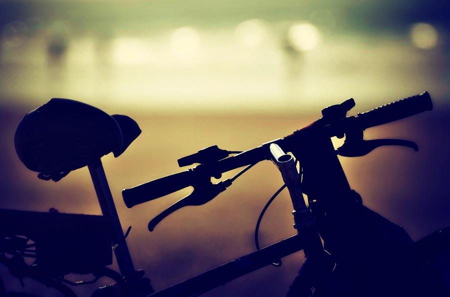 Bici elettrica 36 volt