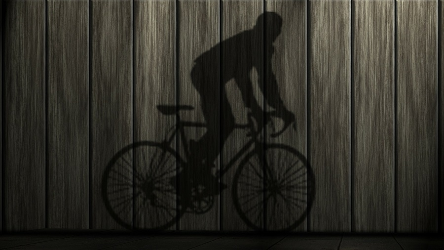 Bici elettrica Zenith