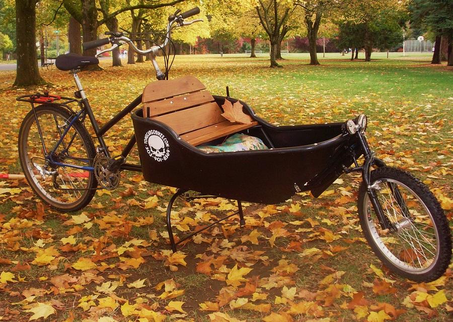 Bici elettrica 3 ruote