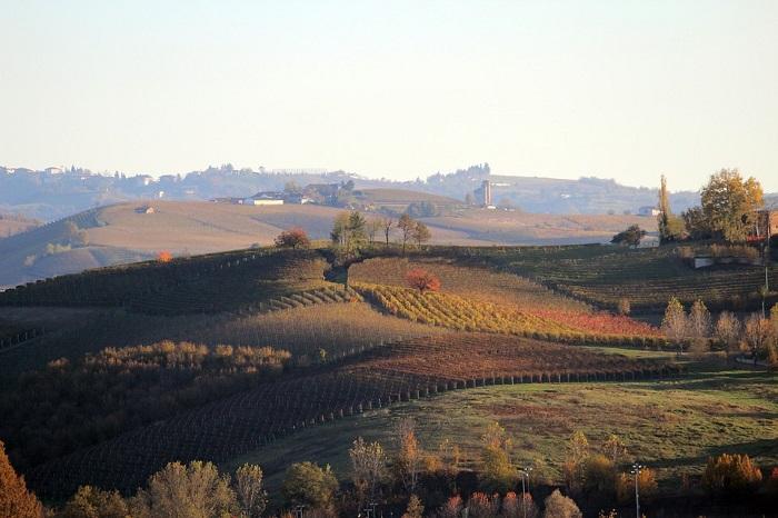 Pedalando nelle vigne