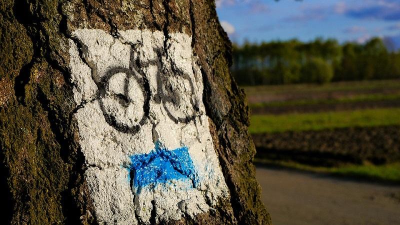 Turismo in bici elettrica: preparazione fisica e tecnica
