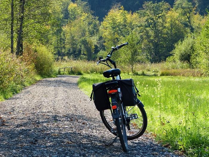 bici elettriche economiche
