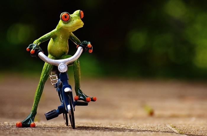 In viaggio con la bici: scegliamo il portabici