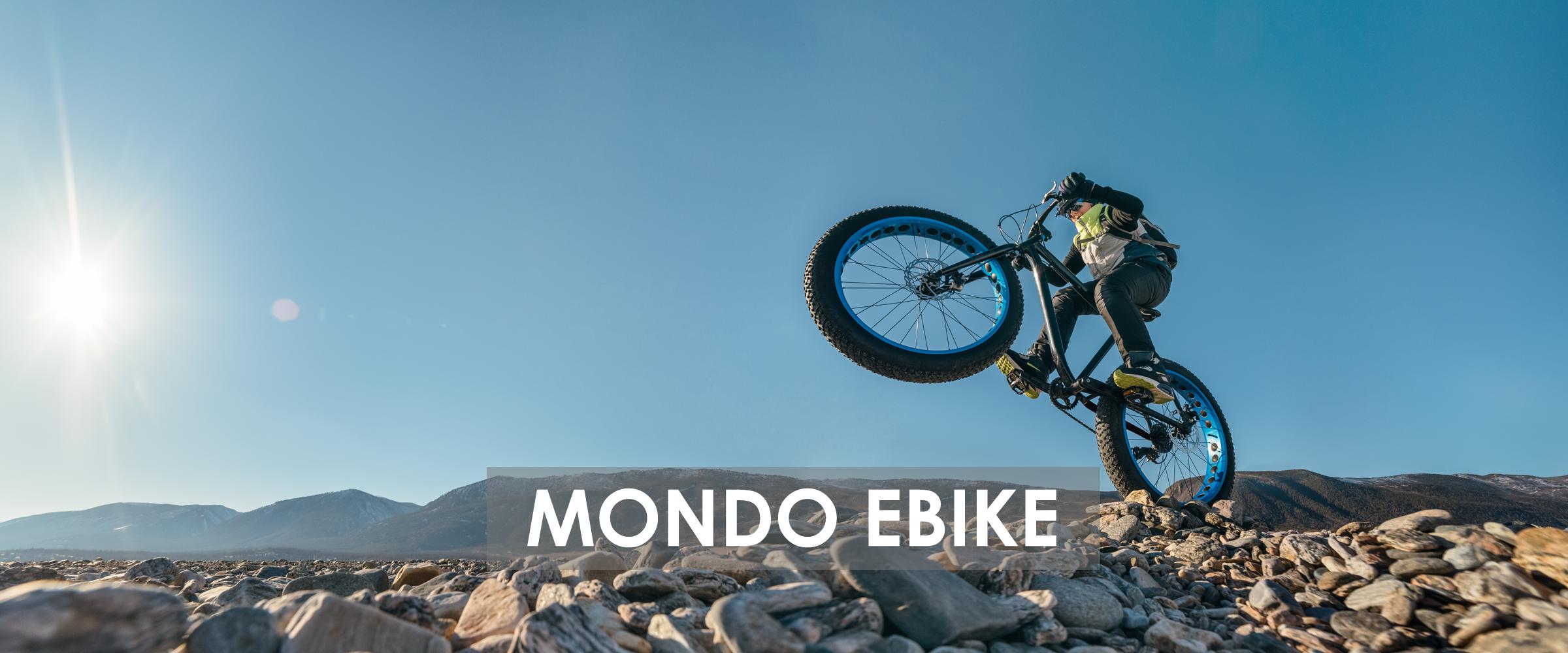 offerte e-bike